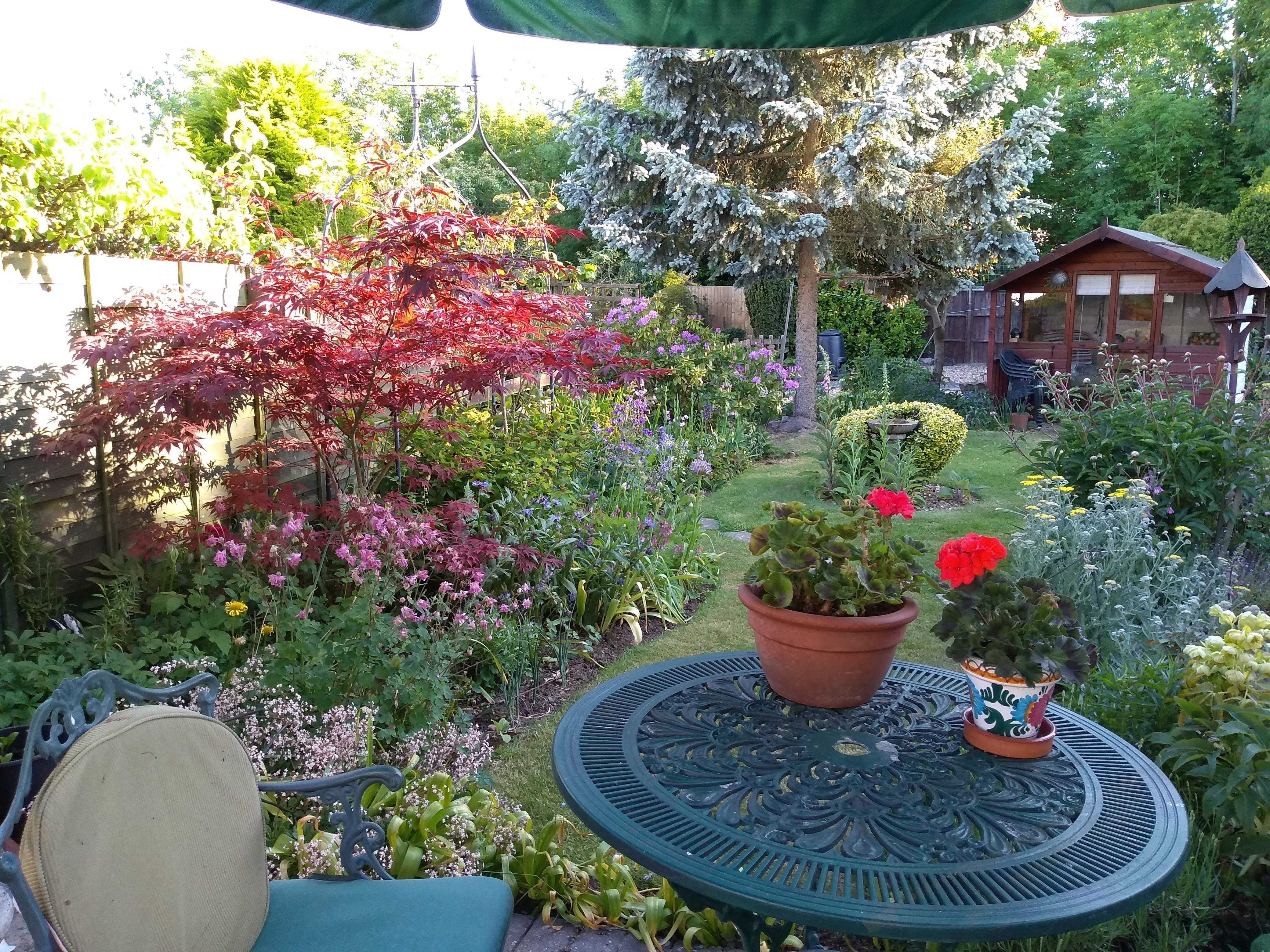 Picure of small round garden table with garden and shed in background, lots of flowers as it's mid May